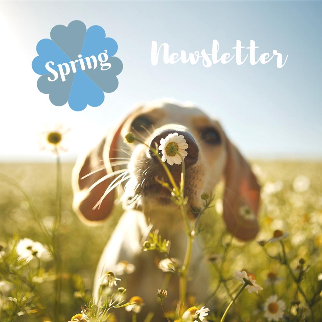 Sylvania Vet Spring Newsletter